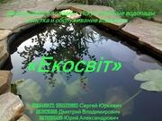 Декоративные водоемы. Искусственные водопады. Очистка и обслуживание в